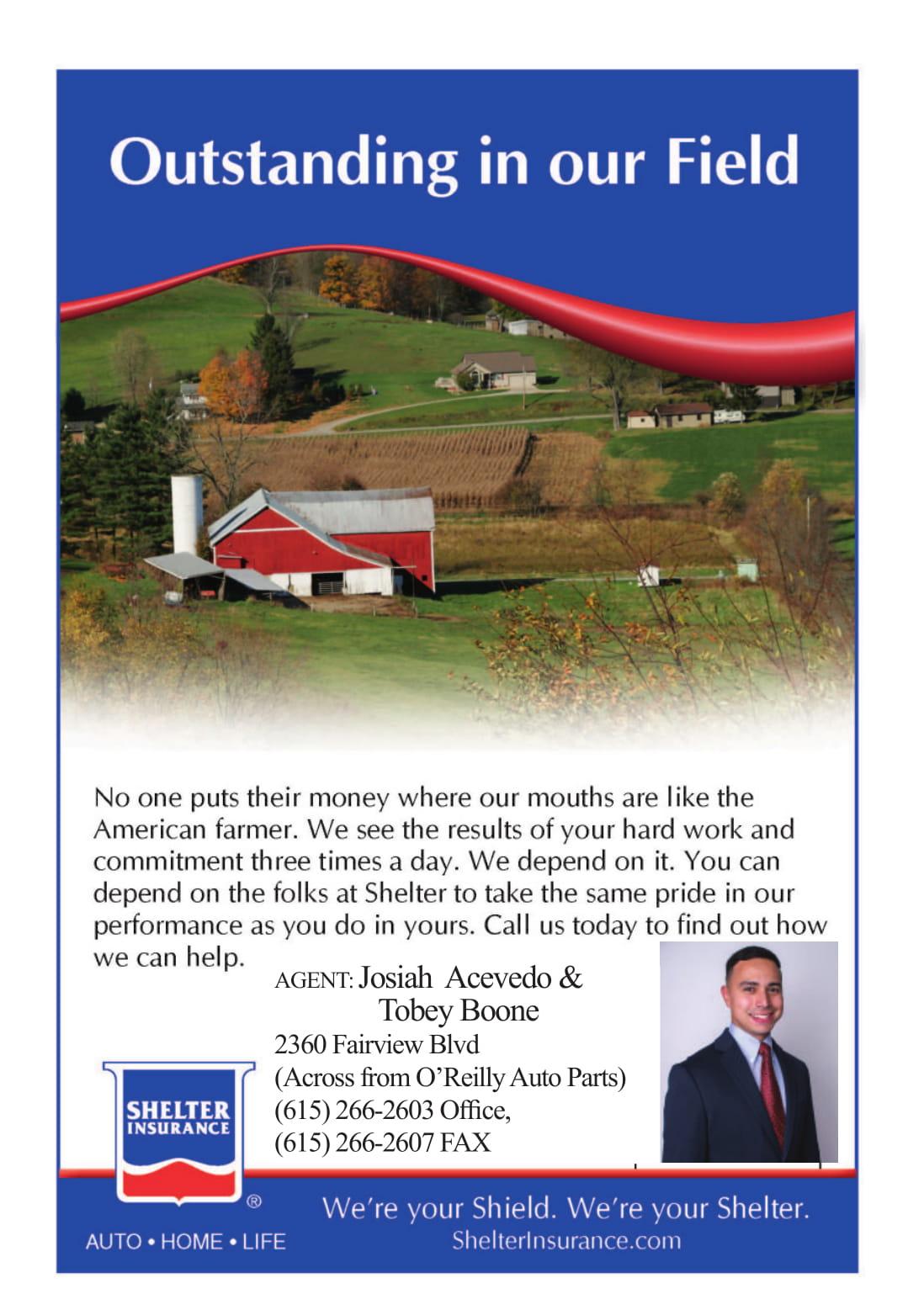 Shelter Insurance