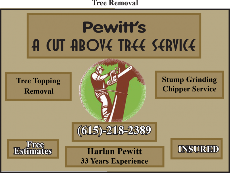 Pewitt's A Cut Above Tree Service
